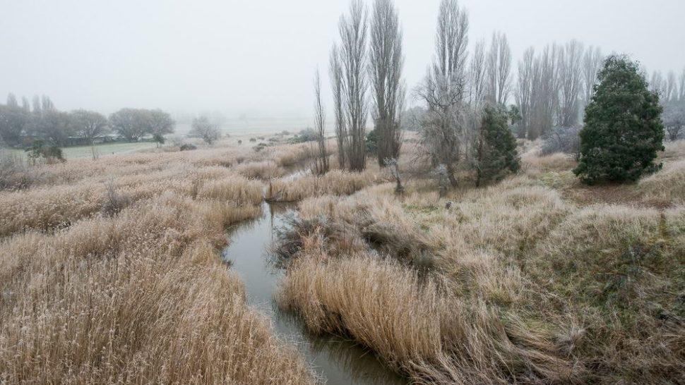 Monaro in Winter