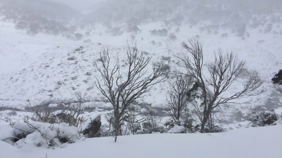 THE SNOWY MOUNTAINS AND THE MONARO: RUGGED MOUNTAINS ...